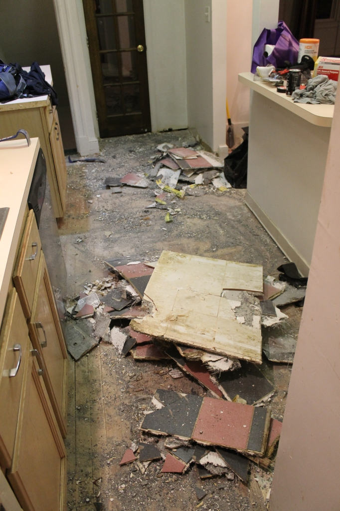 Kitchen Floor Mess