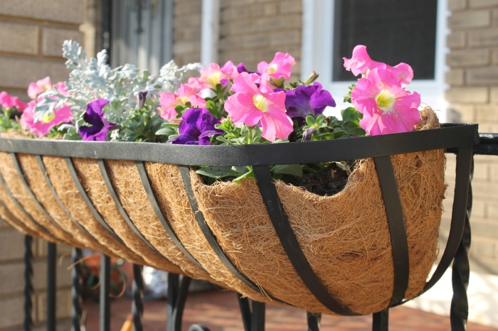The new hanging flower baskets